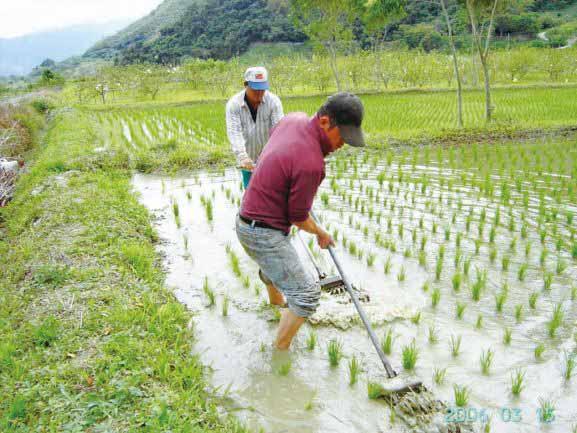 共鳴 -與自然相應的清淨母語農法